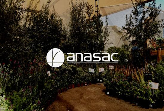 Memoria histórica de Anasac